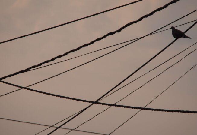 Cruce de cables III